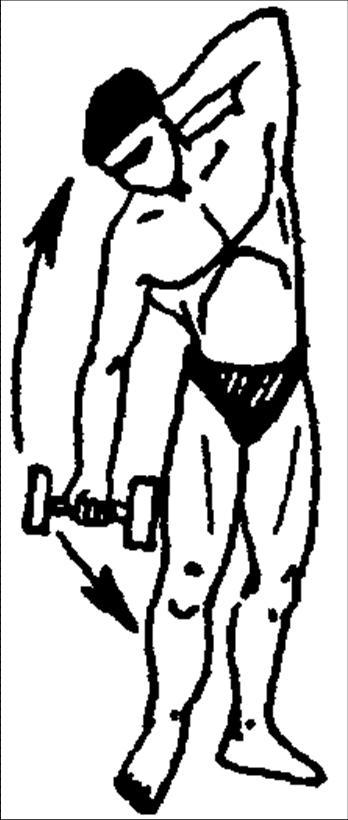 Упражнения для развития мышц брюшного пресса
