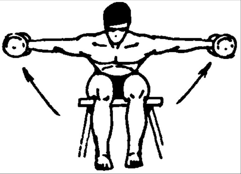 Упражнения для развития мышц плечевого пояса