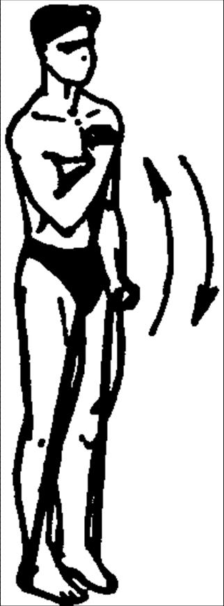 Упражнения для развития мышц рук