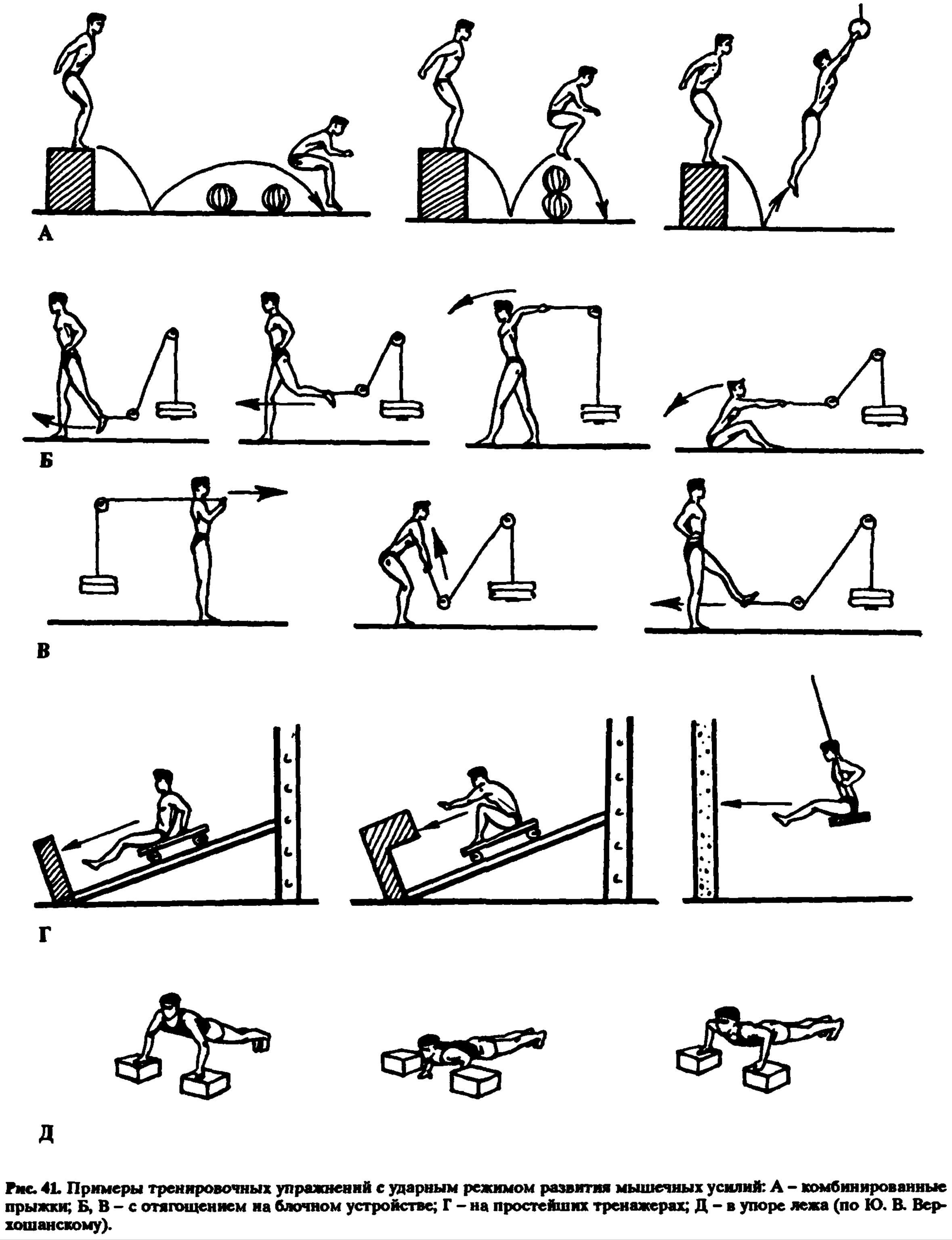 Примеры тренировочных упражнений