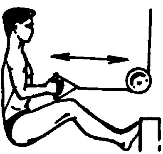 Упражнения для развития мышц спины