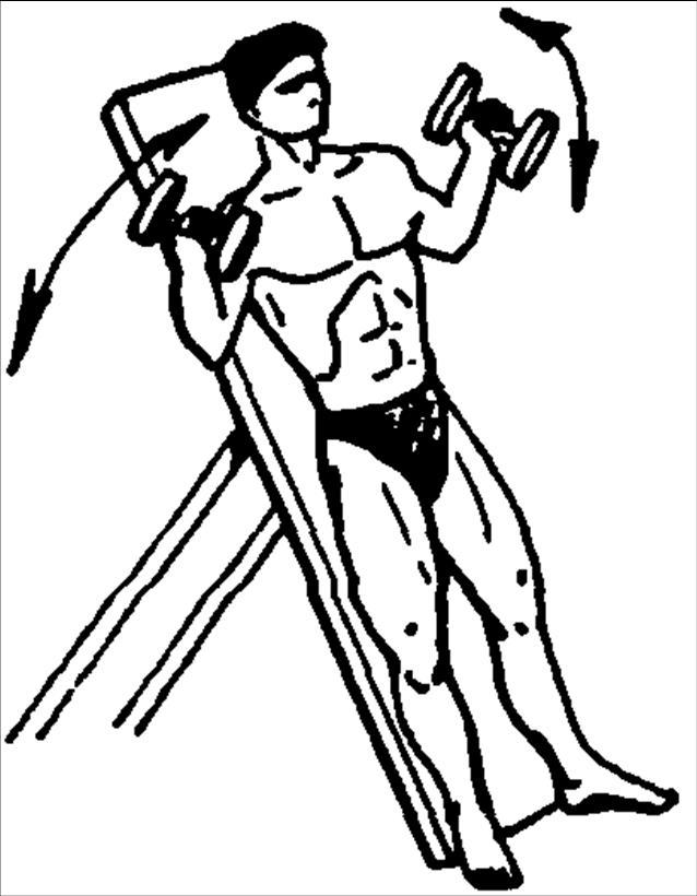 Упражнения для развития мышц груди