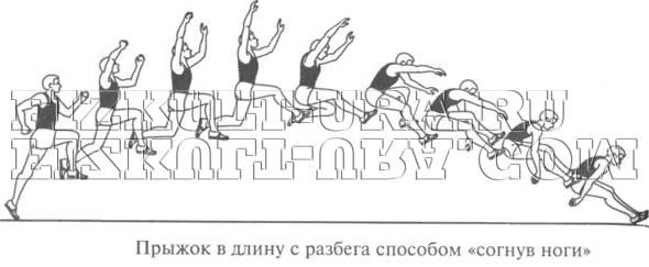 Техника прыжков в длину с разбега ФизкультУРА Прыжок в длину Согнув ноги