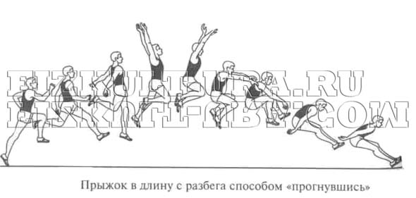 Техника прыжков в длину с разбега ФизкультУРА Прыжок в длину Прогнувшись